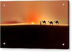 Desert Mirage Acrylic Print