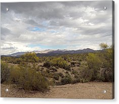 Acrylic Print featuring the photograph Desert Moods by Gordon Beck