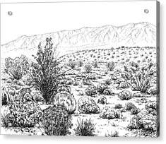 Desert Scrub Ecosystem Acrylic Print