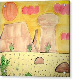 Desert Acrylic Print by Sean Cusack