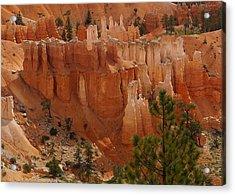 Desert Sentinels Acrylic Print