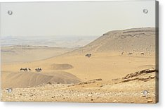 Acrylic Print featuring the photograph Desert by Silvia Bruno