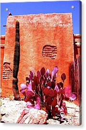Acrylic Print featuring the photograph Desert Solace by Michelle Dallocchio