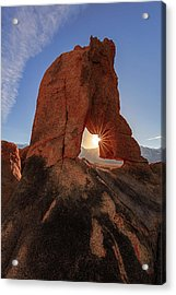 Acrylic Print featuring the photograph Desert Star by Mike Lang