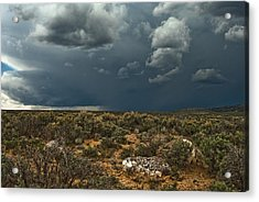 Desert Storm 2 Acrylic Print