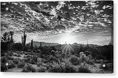 Acrylic Print featuring the photograph Desert Sunrise by Monte Stevens