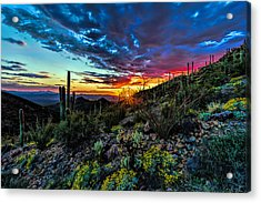 Desert Sunset Hdr 01 Acrylic Print
