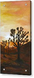 Desert Sunset II Acrylic Print by Merle Blair