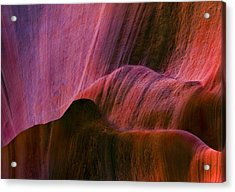 Desert Tapestry Acrylic Print by Mike  Dawson