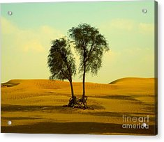 Desert Trees Acrylic Print