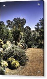 Desert Walkway Acrylic Print