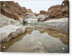 Desert Water Acrylic Print