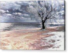 Deserted Beach Acrylic Print by Pennie  McCracken