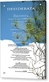Desiderata Poem Over Sky With Clouds And Tree Branches Acrylic Print by Claudia Ellis
