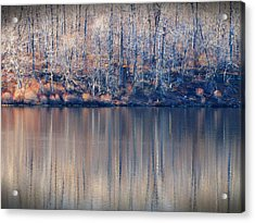 Desolate Splendor Acrylic Print
