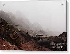 Acrylic Print featuring the photograph Still Untouched By Men by Dana DiPasquale