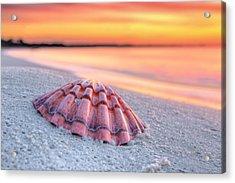 Destin Mornings Acrylic Print by JC Findley