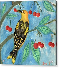 Detail Of Golden Orioles In A Cherry Tree Acrylic Print by Sushila Burgess