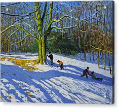 Detail Of Top Of Allestree Park Acrylic Print by Andrew Macara