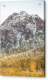 Detail On A Australian Snow Covered Mountain Acrylic Print