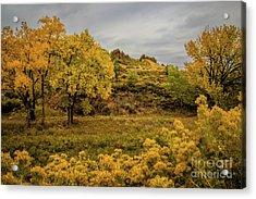 Devils Backbone Autumn Colors Acrylic Print