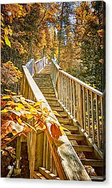 Devil's Kettle Stairway Acrylic Print