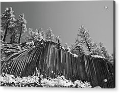 Devil's Postpile - Frozen Columns Of Lava Acrylic Print by Christine Till