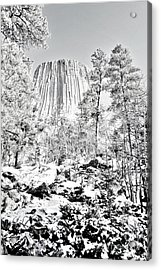 Devils Tower Wyoming Acrylic Print