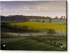 Devon Dawn Acrylic Print by Neil Buchan-Grant