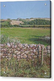 Acrylic Print featuring the painting Devon Field And Drystone Wall by Martin Davey