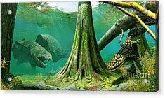 Devonian Mural Acrylic Print