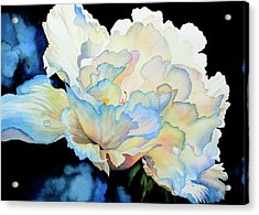 Dew Drops On Peony Acrylic Print by Hanne Lore Koehler