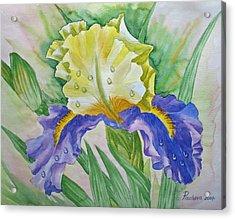 Dew Drops Upon Iris.2007 Acrylic Print by Natalia Piacheva