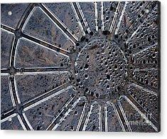 Dew On Dish Acrylic Print