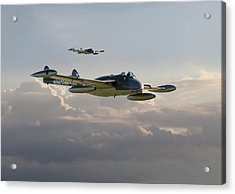 Acrylic Print featuring the photograph  Dh112 - Venom by Pat Speirs