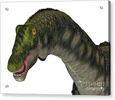 Diamantinasaurus Dinosaur Head Acrylic Print