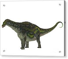 Diamantinasaurus Dinosaur Side Profile Acrylic Print
