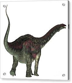 Diamantinasaurus Dinosaur Tail Acrylic Print