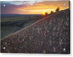 Diamond Craters Sunset Acrylic Print