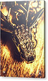 Diamond Encrusted Wildlife Bracelet Acrylic Print by Jorgo Photography - Wall Art Gallery
