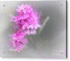 Diana Acrylic Print