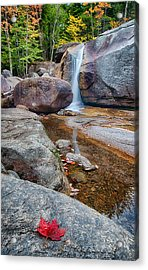 Diana's Baths 8815 Acrylic Print by Dan Beauvais