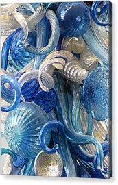 Diaphanous Nudibranch Acrylic Print