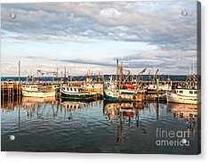 Digby Harbour Acrylic Print
