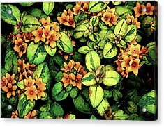 Digital Painting Quilted Garden Flowers 2563 Dp_2 Acrylic Print