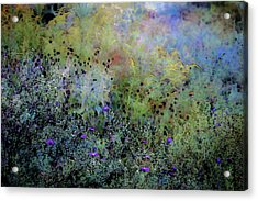 Digital Watercolor Field Of Wildflowers 4064 W_2 Acrylic Print
