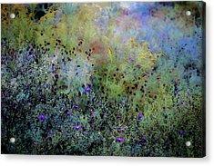 Digital Watercolor Field Of Wildflowers 4064 W_2 Acrylic Print