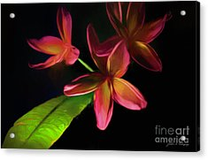Digitized Sunset Plumerias #2 Acrylic Print