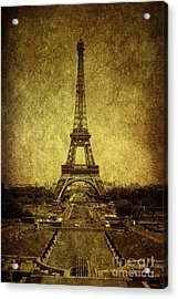 Dignified Stature Acrylic Print by Andrew Paranavitana