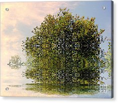 Dimensional Acrylic Print